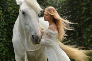 horses8